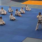 Mezinárodní seminář taekwonda  v Praze
